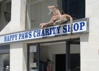 The Happy Paws Charity Shops